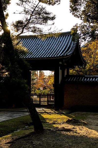 Evening Gate