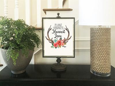 Seasonal Illustrations & Wall Art