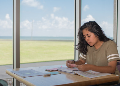 Karleigth Flores prepares for a test at her favorite study spot in Corpus Christi Hall.