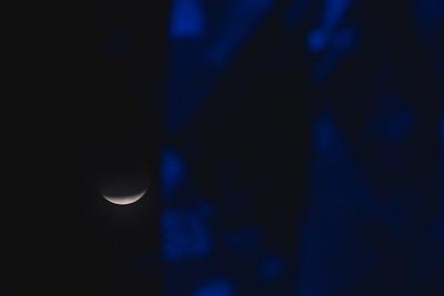 2018_0131-Moon-8040