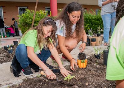 ECDC student Kadance Willems (left) and Islander Green Team member Melissa Zamora plant different herbs in the new Early Childhood Development Center community garden.