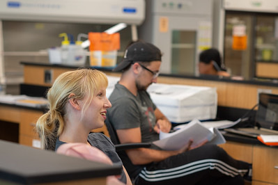 Students review for an upcoming exam in summer microbiology course in Tidal Hall.