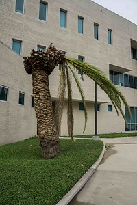campus-05579