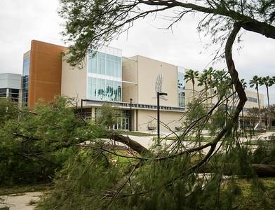 campus-05589