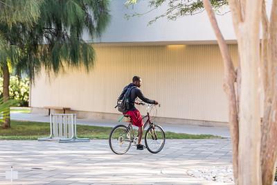 The TAMU-CC campus - exterior