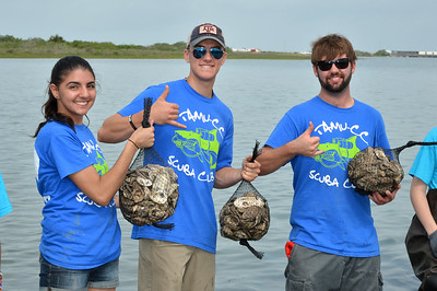 members-of-the-universitys-scuba-club-volunteer-at-the-oyster-reef-restoration-project-held-at-goose-island-state-park_14185255684_o