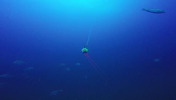 ROV_LaserScale