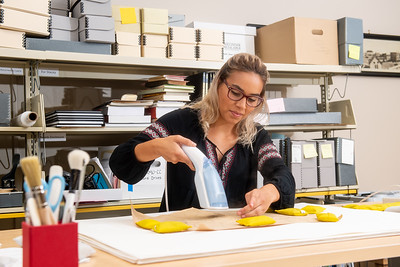 Library Specialist II Shelby Gonzalez uses a handeld steamer to prepare an archived document for scanning.