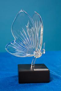 CONHS-Award-5327