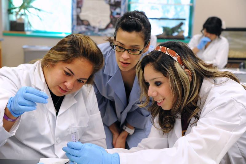 Chemistry students work on a lab