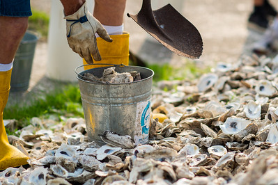2019_0518-OysterReefRestoration-3186