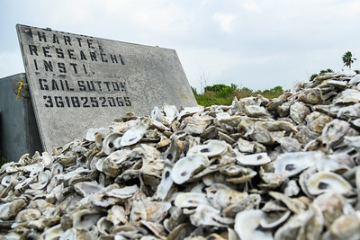 2019_0518-OysterReefRestoration-0881