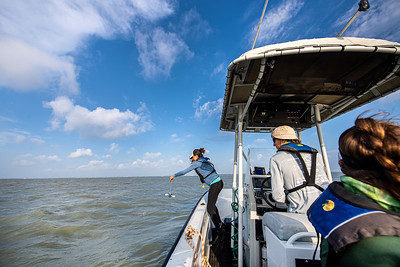 Natasha Breaux uses a Secchi Disk to measure the water clarity at their lab site.