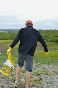 Ryker Hall cleans up the Campus Marsh.