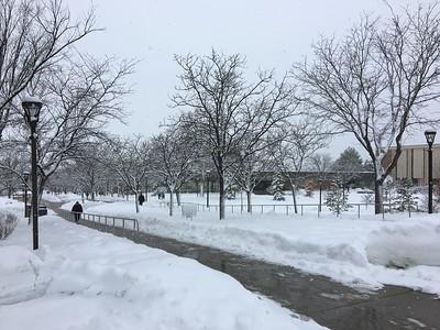 Snowy mall