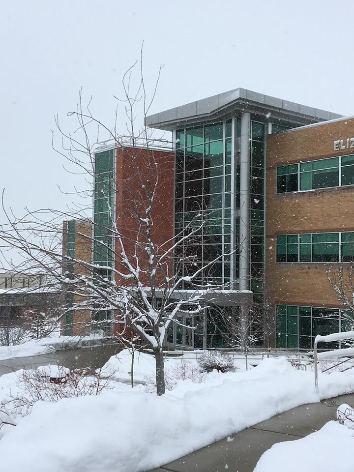 Wintery Elizabeth Hall