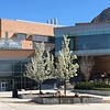 Tracy Hall Science Center