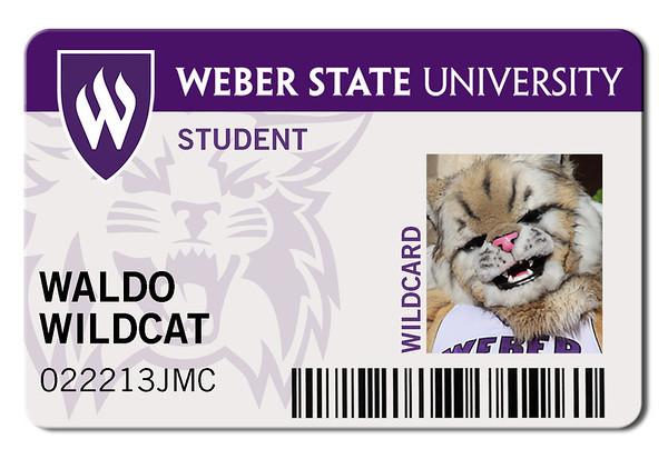 Waldo Wildcard
