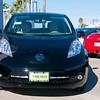 Mossy Nissan Leaf_0904