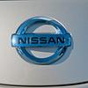 Mossy Nissan Leaf_0908