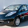 Mossy Nissan Leaf_0963