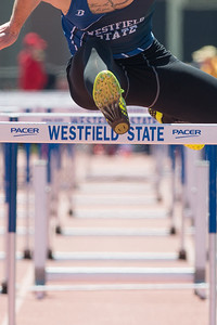 Track & Field meet at Alumni Field, Westfield State University, April 16th, 2016