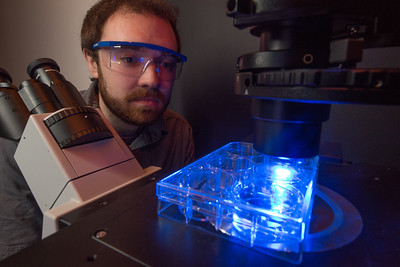 Westfield State University Student James Scripter doing research utilizing flouresence microscopy