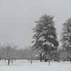 Westfield State University, snow scenes