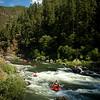rogue_river-9135.jpg
