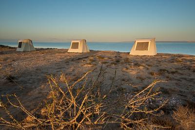 Mexico. San Ignacio Lagoon. Sunrising on tourists.