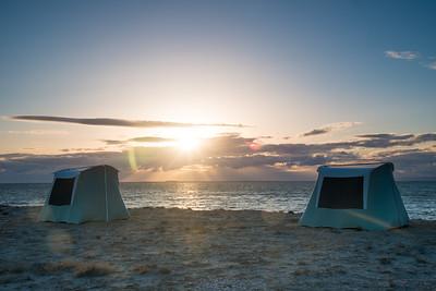 Mexico. San Ignacio Lagoon. Sunsetting on beach.