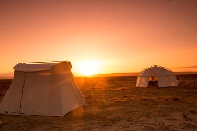 Mexico. San Ignacio Lagoon. Sunsetting on tourists.