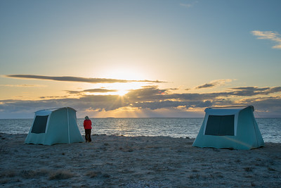 Mexico. San Ignacio Lagoon. Sunsetting on beach, woman standing.