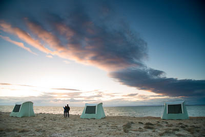 Mexico. San Ignacio Lagoon. Sunsetting on beach, couple watching.