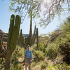 Mexico, Baja. Sierra deSan Francisco, Santa Teresa Canyon. Man hiking through canyon. through canyon.
