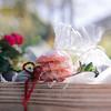 Sprigs & SeaBreeze ~ Valentine's Day '19_012