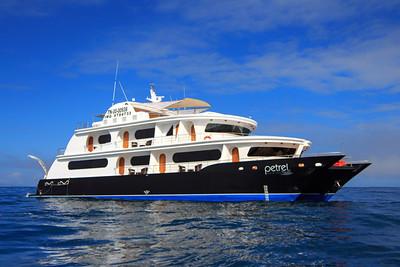 Galapagos - Petrel
