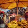 Going Bananas - Yellow Umbrella