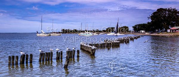 MPOR17 Jules VidPicPro com-2070