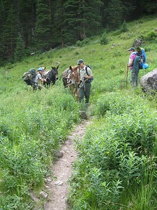Wilderness Volunteers: 2016 Maroon Bells-Snowmass Wilderness, White River National Forest (Colorado)