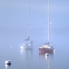 Sailboats in the fog