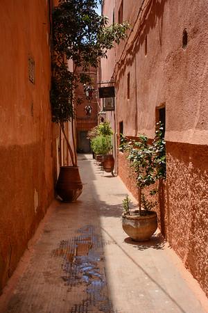 T2684 Marrakesh
