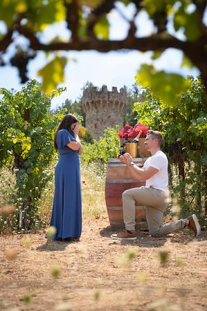 Chris & Melissa Proposal