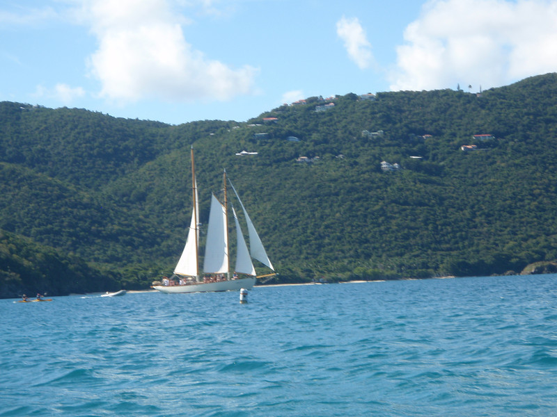 This sailboat is a 65' schooner named the Heron. We came back later this day to do a sunset sail on it.