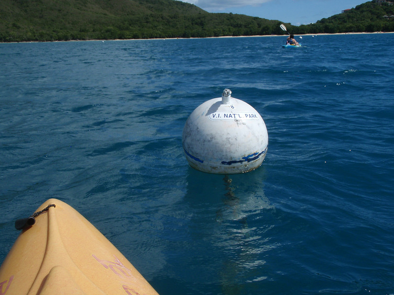 Mooring buoys are in the bay so that ships don't drop anchor and wreck coral.