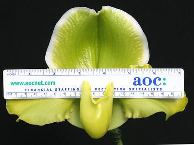 Greenvale  Dorothy Martin FCC scale NS