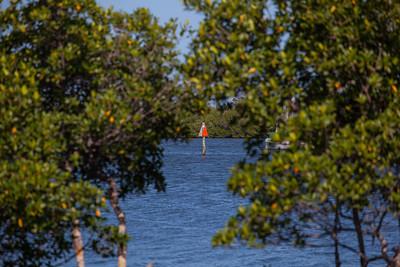Marsh Island Community Images-355