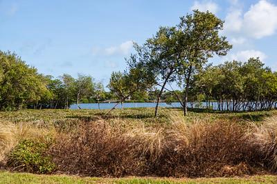 Marsh Island Community Images-318
