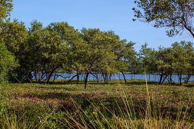 Marsh Island Community Images-269