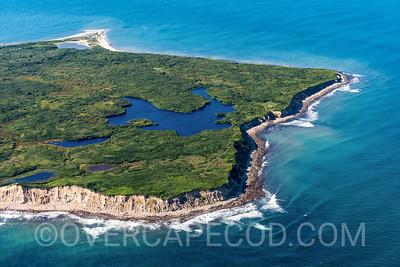 Noman's Land Island, Chilmark (3)